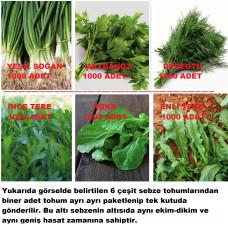 Karışık Yeşillik Sebze Seti Tohumları 6 Çeşit Sebze Biner Adet